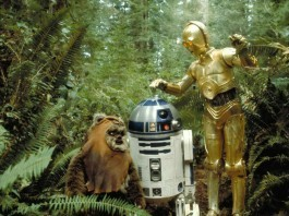 C3PO, R2D2, and an Ewok