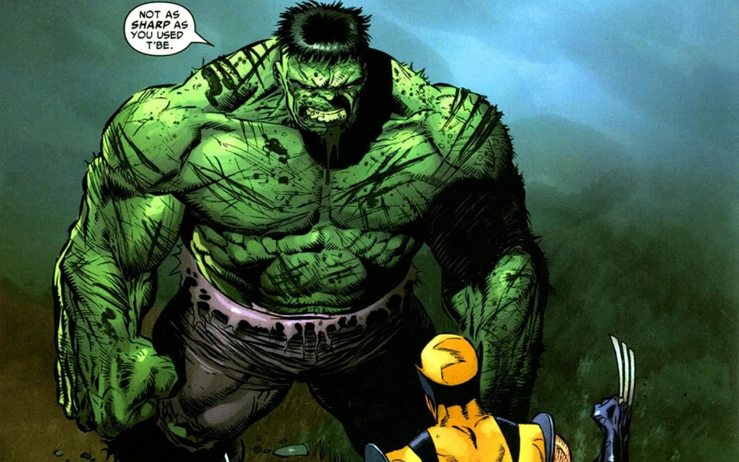 Hulk vs. Wonder Woman! Who Will Win? YOU DECIDE!