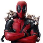 Deadpool and kittens